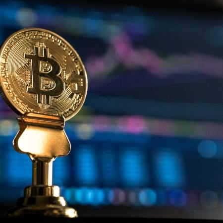 tim draper bitcoin beastpost